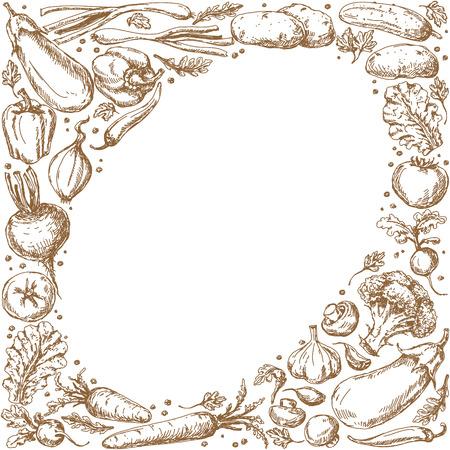ovalo: Marco oval con croquis de verduras y especias establecidos.