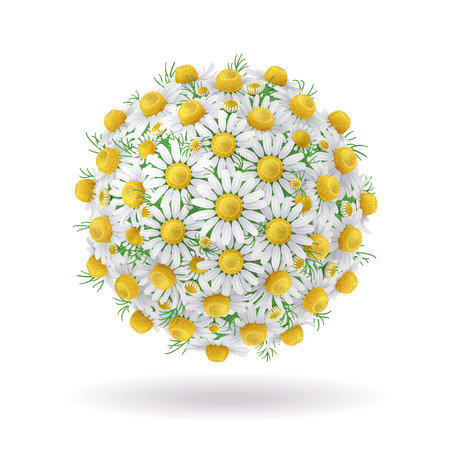 Floral ball of chamomile flowers isolated on white.