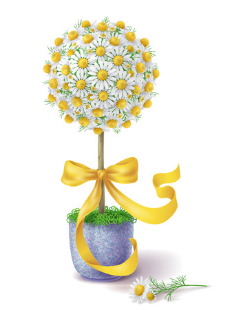 topiary: Small handmade floral topiary decorated with chamomile flowers and yellow ribbon in blue pot.