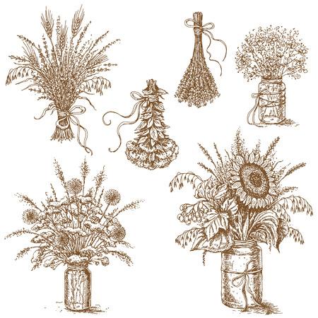 flores secas: Dibujado a mano dibujo de conjunto de varios ramos de flores silvestres, cereales y hierbas secas en estilo rústico. La imagen se puede utilizar como una ilustración para el diseño de la boda rústica. Vectores