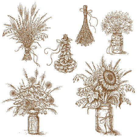 Hand drawn sketch of set of various bouquets with wildflowers,  cereals and dried herbs  in rustic style. The image can be used as an illustration for rustic wedding design. 矢量图像
