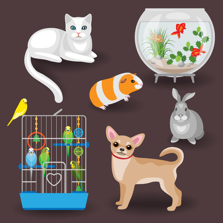 petshop: Set of pets and other animal companions. Cat, dog, rabbit, guinea pig, budgies in the cage and aquarium with fishes on dark background. Illustration