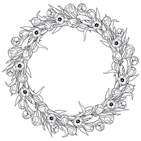 contoured: Hand drawn round frame on white. Contoured wreath of tulips for coloring.
