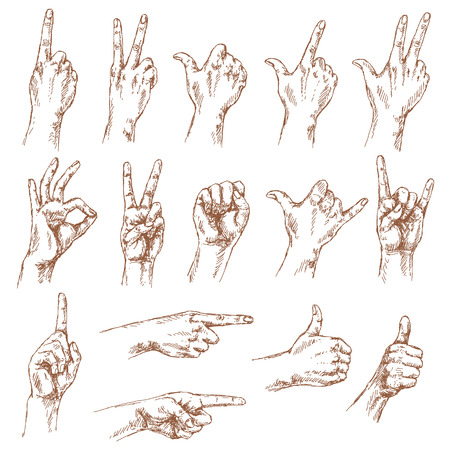 thumbsup: Sketch of hand gestures. Set of the different positions of the hands: count gestures, victory sign, Shaka, okay,  pointing gesture, thumbs-up,  closed fist.