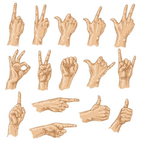 puños cerrados: Bosquejo coloreado de gestos con las manos. Conjunto de las diferentes posiciones de las manos: recuento de los gestos, muestra de la victoria, Shaka, está bien, gesto que apunta, pulgares para arriba, cerrado el puño.