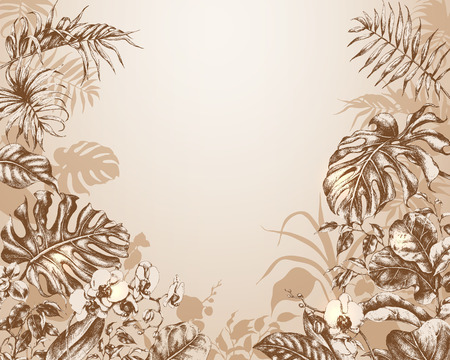 Hand drawn branches and leaves of tropical plants. Natural background with tropical plants.