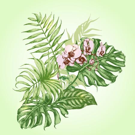 Hand gezeichnete Zweige und Blätter von tropischen Pflanzen. Bouquet mit rosa Orchideen-Blüten.