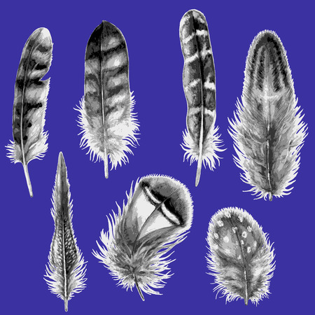 Hand drawn set of various feathers. Watercolor grey spotted feathers isolated on blue  background. Vectores