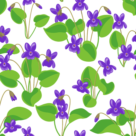simplified: Simplified image of spring flower. Dog-violet flowers on white background. Floral seamless texture.
