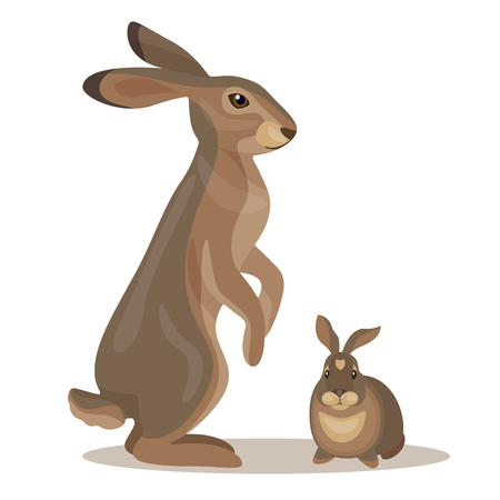 brown hare: Simplified image of  hare and  little leveret isolated on white . Illustration