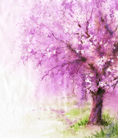Hand drawn watercolor illustration. Nature landscape.  Spring background with pink blossoming sakura tree. 스톡 콘텐츠