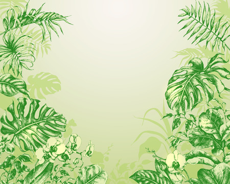Hand drawn branches and leaves of tropical plants. Natural green  background with tropical plants. 일러스트