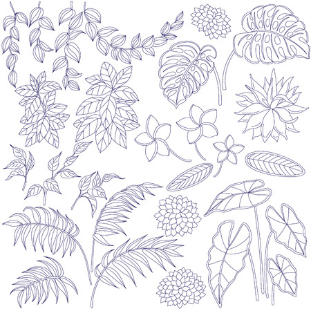 Set of leaves and flowers. Contoured image  of tropical plants. Floral elements for coloring. Vettoriali