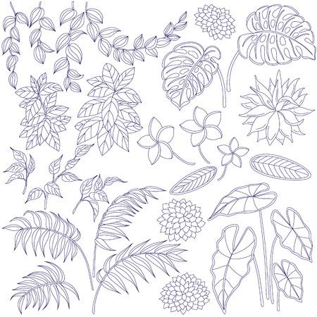 Set van bladeren en bloemen. Contoured beeld van tropische planten. Bloemen elementen voor het kleuren. Stock Illustratie