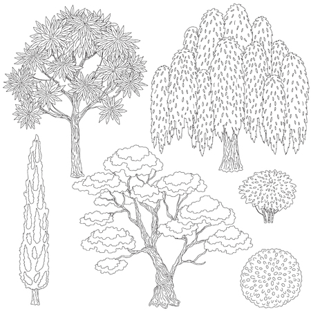 tree leaves: set of outlines trees and bushes.  Black and white elements for coloring. Illustration