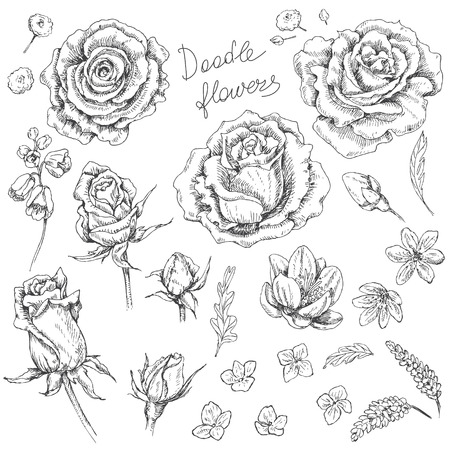 buds: Hand drawn set of doodle flowers. Floral elements for decoration.