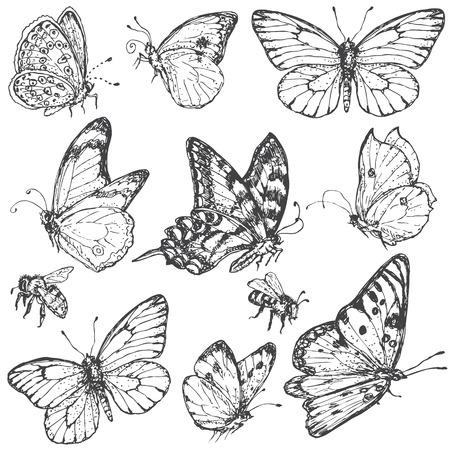 Hand getrokken set van doodle insecten. Zwart-wit beeld van het vliegen en zitten vlinders en bijen. Zwarte en witte elementen voor het kleuren. Vector schets. Stock Illustratie