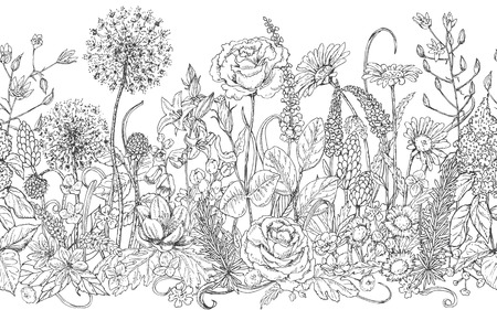 Dibujado a mano patrón de línea sin fisuras con flores silvestres. flores silvestres de bosquejo blanco y negro y la hierba para dar color. Monocromo elementos florales para decoración. dibujo vectorial. Ilustración de vector
