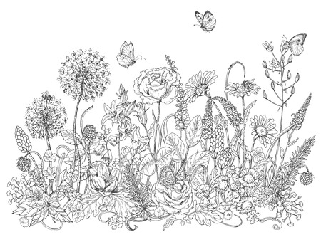 Hand drawn line illustration with wildflowers and insects. Black and white doodle wild flowers, bees and butterflies for coloring. Floral elements for decoration. Vector sketch. Vectores
