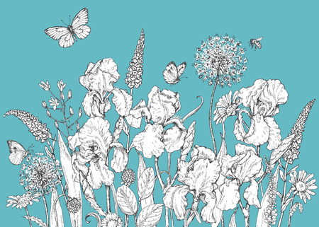 Hand drawn line illustration with iris, wildflowers and insects. Black and white doodle wild flowers, bees and butterflies on blue background. Floral elements for decoration. Vector sketch.