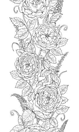Dibujado A Mano Patrón Floral Con Rosa De Té. Flores Blancas Y ...