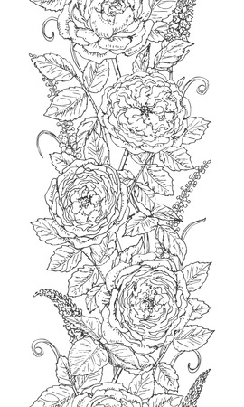 tea rose: Hand drawn floral  line pattern with tea rose. Black and white doodle flowers. Coloring page. Monochrome seamless texture. Vector sketch. Illustration