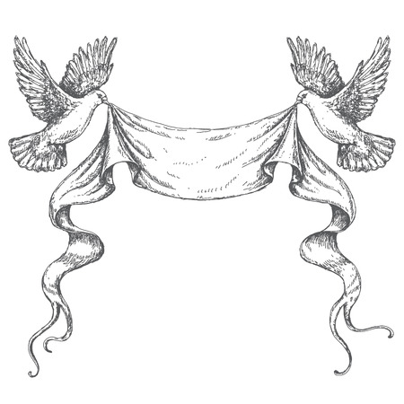 Hand drawn pair of flying doves with banner ribbon. Black and white image. Space for text. Two pigeons vector sketch.