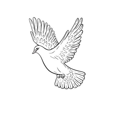 Vereenvoudigd beeld van het vliegen duif op wit wordt geïsoleerd. Hand getrokken voorgevormde duif. Vector Illustratie