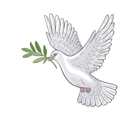 Hand drawn white  flying dove with olive branch. Illustration