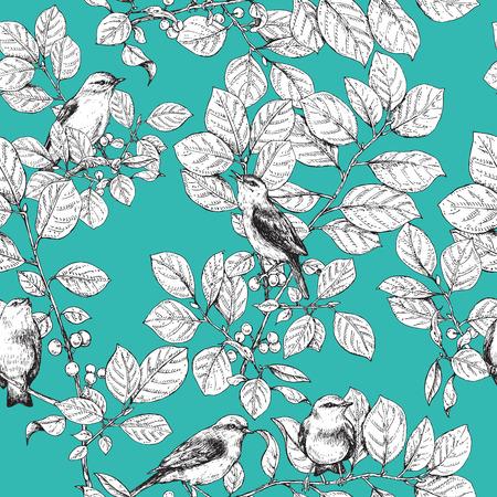 turquesa: dibujados a mano pájaros posados ??en las ramas con hojas y bayas. Imagen blanco y negro de los pájaros cantores en el fondo turquesa. Vectores