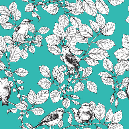 trill: Hand drawn birds sitting on branches with leaves and berries.  Black and white image  of songbirds on turquoise background.