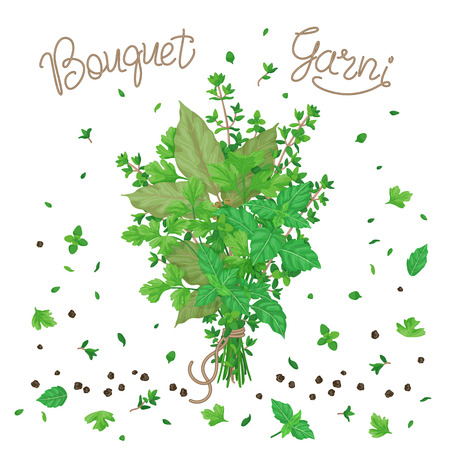 Bouquet garni of thyme, bay leaves, parsley and basil tied with a string. Bundle of flavoring green herbs, scattered leaves and pepper isolated on white.