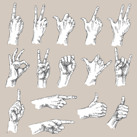gesture set: Sketch of hand gestures. Monochrome set of the different positions of the hands: count gesture, victory sign, Shaka, okay, pointing , thumbs up, closed fist.