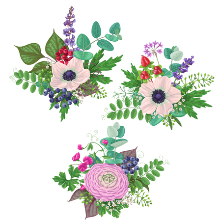 Bunches of flowers isolated on white. Romantic bouquets with cream color anemone, buttercup, floral elements and berries. Illustration