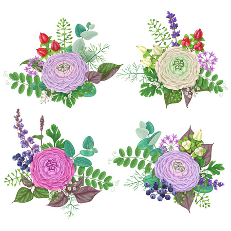 Bunches of flowers isolated on white. Romantic bouquets with buttercup, floral elements and berries. Illustration