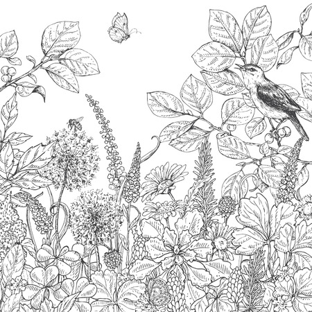 Hand drawn floral elements. Black and white flowers, plants, butterfly and sitting songbird on branch. Monochrome vector sketch.