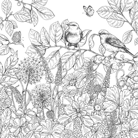 Hand drawn floral elements. Black and white flowers, plants, butterflies and two sitting songbirds on branch. Monochrome vector sketch. Ilustração