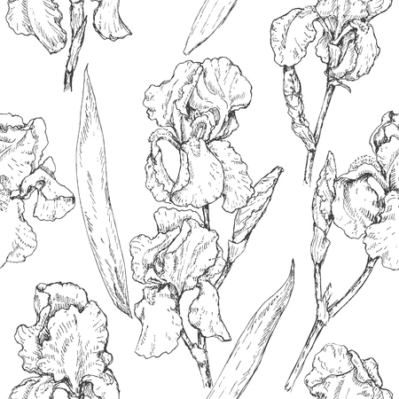 country flowers: Hand drawn seamless pattern with iris flowers and leaves. Black and white doodle monochrome floral elements. Vector sketch.