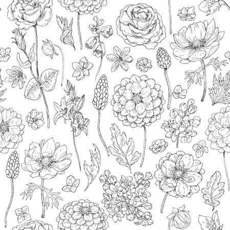 Hand drawn seamless pattern with dahlia, anemone, petal and leaves. Black and white doodle flowers and grass. Monochrome floral elements. Vector sketch.