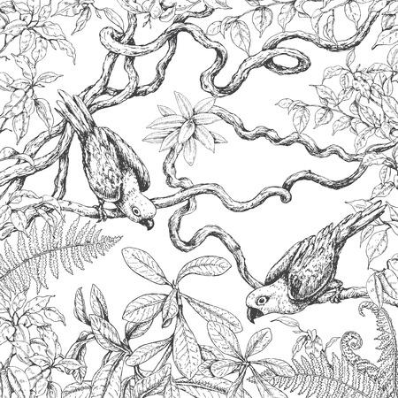 손으로 그린 지점과 열대 식물의 잎. 등나무 나뭇 가지에 앉아 흑백 앵무새. 성인 흑백 색칠 페이지. 벡터 스케치.