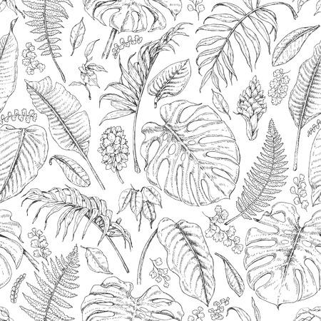 Hand getrokken takken en bladeren van tropische planten. Zwart-wit bloemenpatroon. Monstera, varen, palmbladeren schets. Zwarte en witte naadloze textuur.