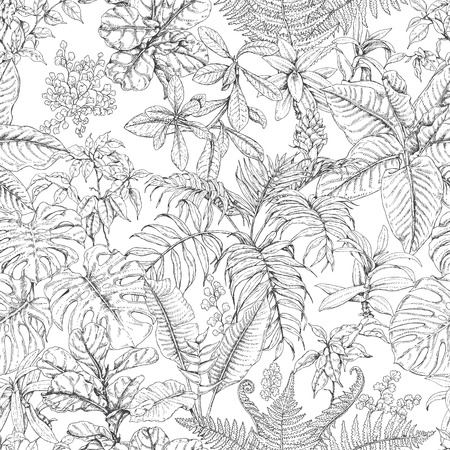 Hand drawn branches and leaves of tropical plants. Monochrome sketch floral pattern. Black and white seamless texture.