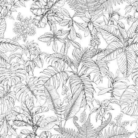 Hand getrokken takken en bladeren van tropische planten. Zwart-wit schets bloemenpatroon. Zwarte en witte naadloze textuur. Stock Illustratie