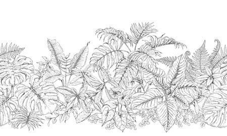 Hand getrokken takken en bladeren van tropische planten. Monochrome lijn horizontaal bloemenpatroon. Zwarte en witte naadloze textuur. Vector schets.