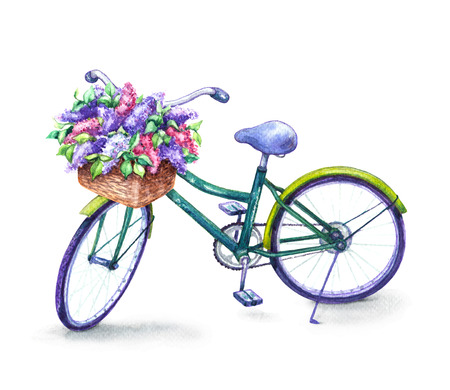 Hand drawn illustration of bicycle with basket isolated on white background. Watercolor sketch of green bike and  lilac flowers.