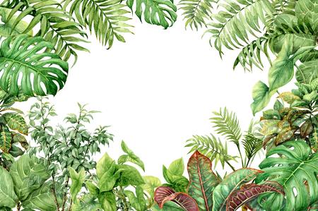 Des branches dessinées à la main et des feuilles de plantes tropicales. Fond vert naturel avec espace pour le texte. Cadre floral aquarelle.