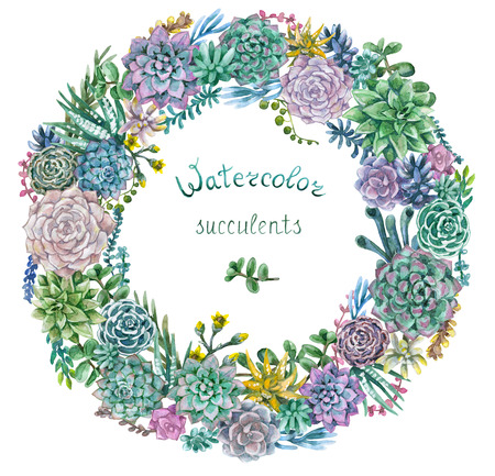 Hand drawn watercolor illustration. Floral elements for decoration. Watercolor round frame of various succulents isolated on white. Stock Photo