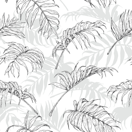 tropical plants: Hand drawn branches and leaves of tropical plants. Monochrome palm fronds sketch pattern. Black, gray and white seamless texture.
