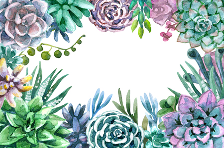 Hand drawn watercolor illustration. Floral elements for decoration. Rectangle frame of succulents with space for text. Stock Photo