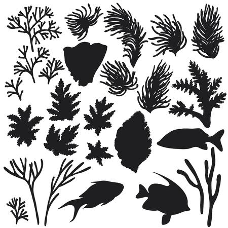 Dibujado a mano elementos naturales bajo el agua. Bosquejo de animales de arrecife. Conjunto de silueta de peces y corales. Foto de archivo - 74485297